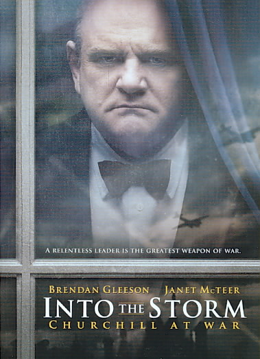 INTO THE STORM BY GLEESON,BRENDAN (DVD)